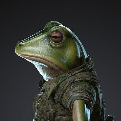 Sendoa bergasa frog wip 018