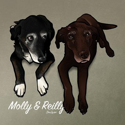 Steve rampton molly reilly