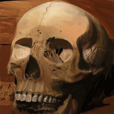 Andreas bech skull 1 studie 1800pwx