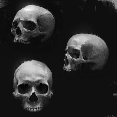 Aaron griffin skulls