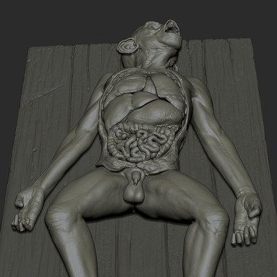 ape autopsy wip/study updates soon