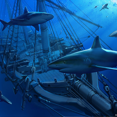 Sviatoslav gerasimchuk sharks