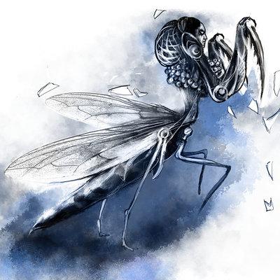 Lesta danica mantis