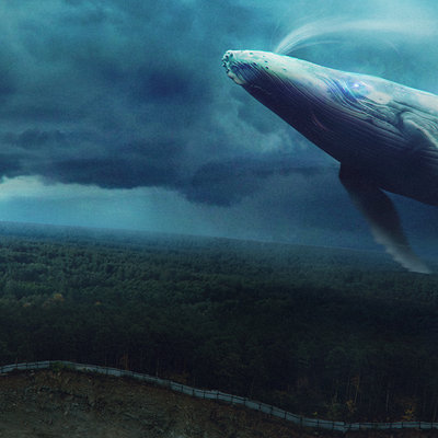 Dmitry bogoljubov whale