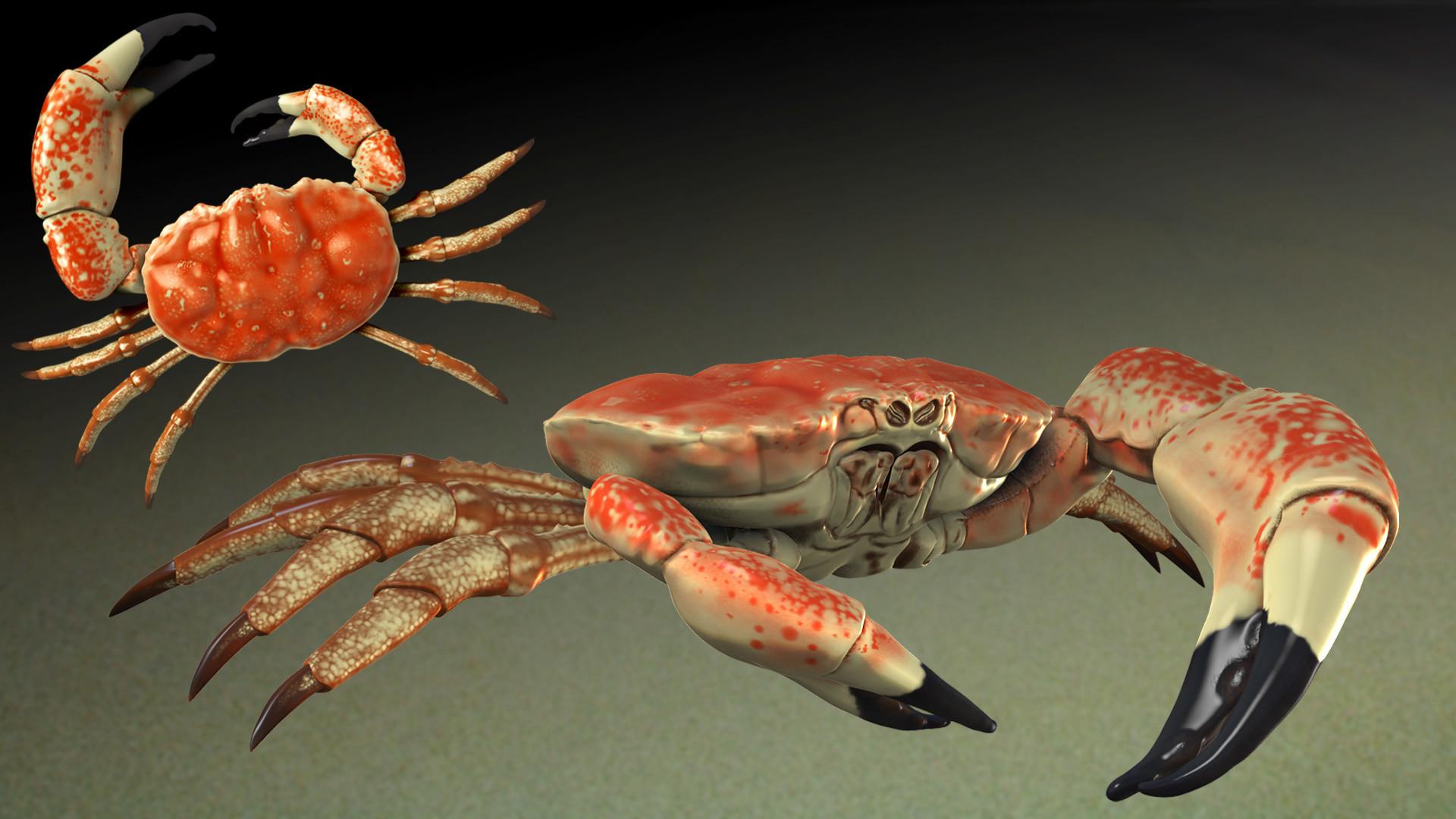 Jeff Rossavik - Tasmanian King Crab
