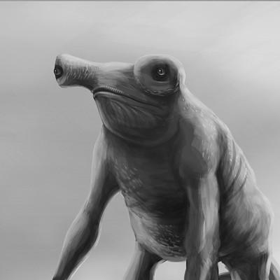 Martin malek swampmeleon