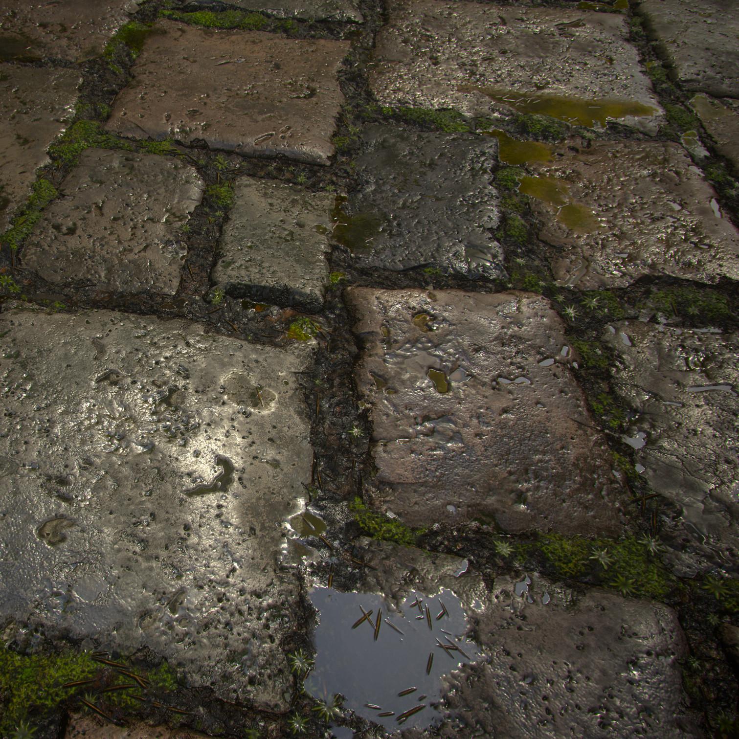 Wet Stone Floor - 100% Substance Designer
