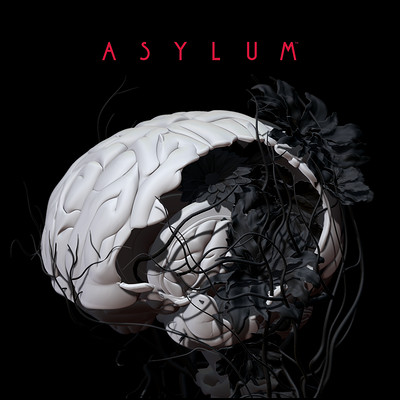 Laury guintrand asylum012 square