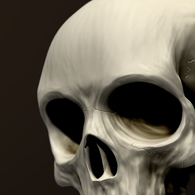 Marc virgili calavera render ok behance