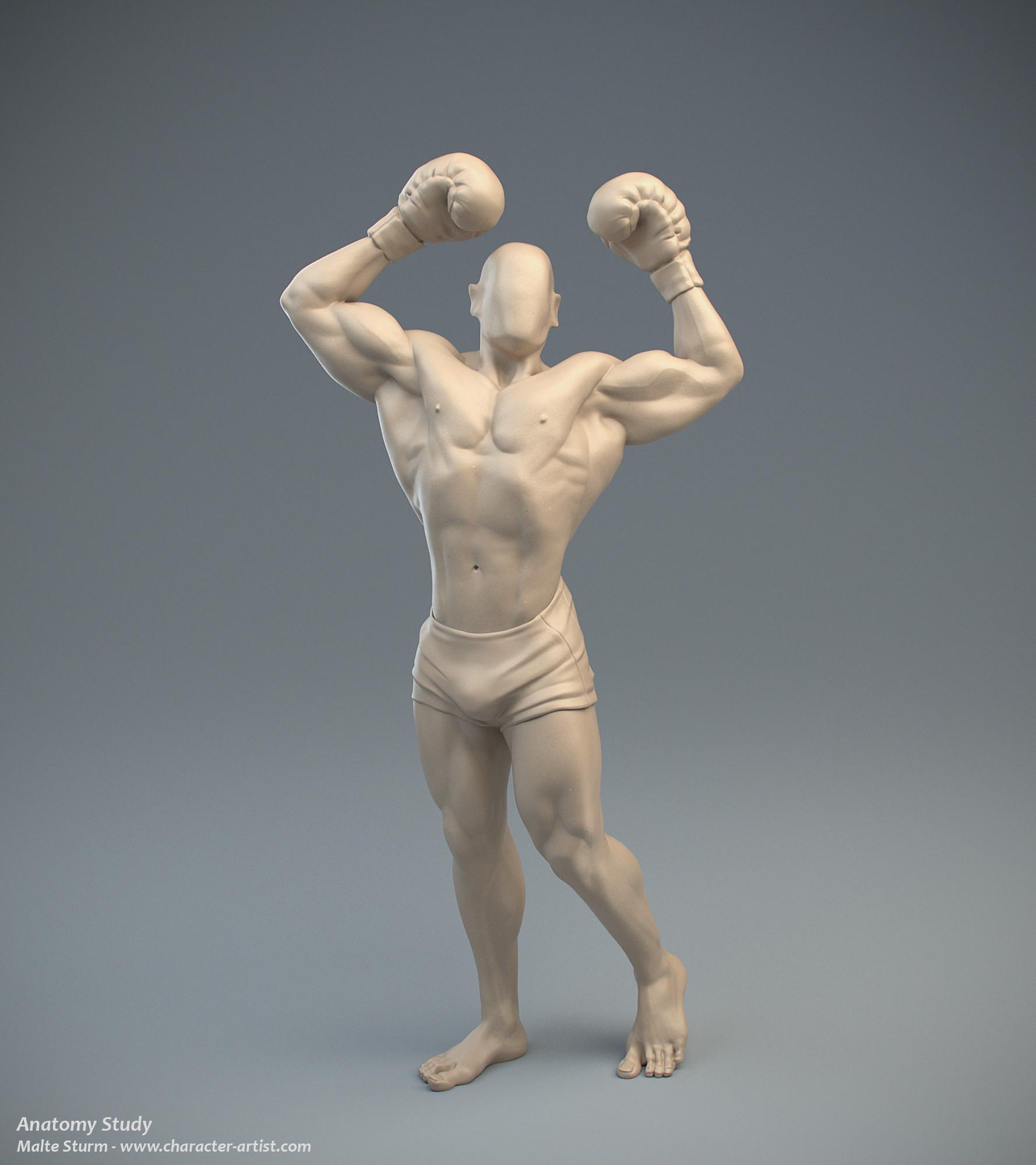 3D Character Artist Malte Sturm - Anatomy study