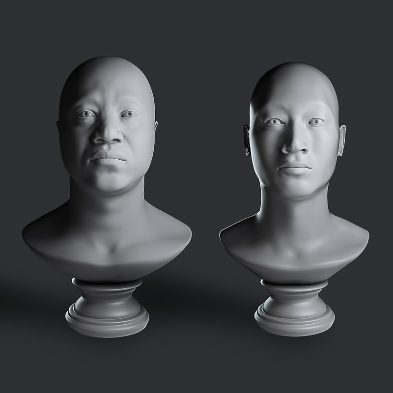 3D study of african and asian races