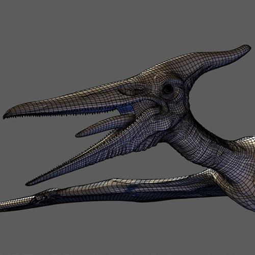 Pteranodon Rig