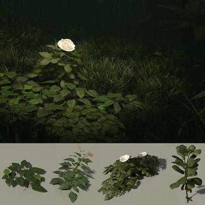 Marvin tischler plants 001 a cover