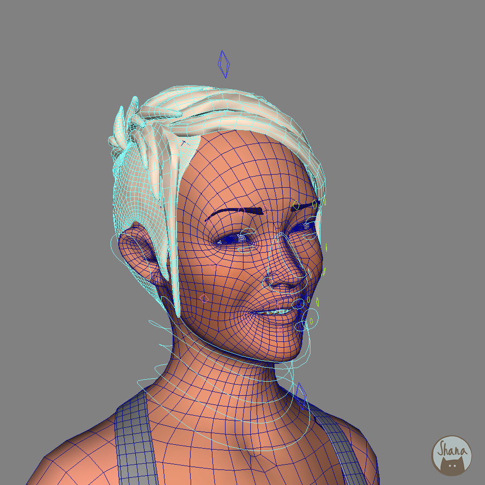 Urban Girl Face Rig