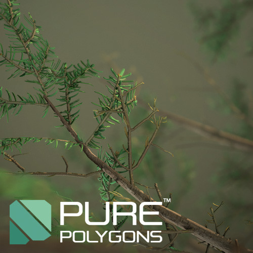 Pine Branches - Game Assets : PurePolygons