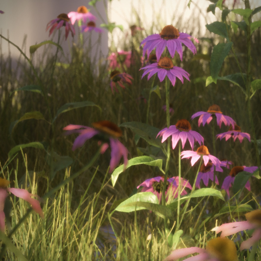 Plant Game Assets - Purple Coneflower & Buffalo Grass