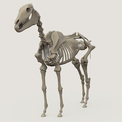 Diego lujan horse skeleton zumbnail