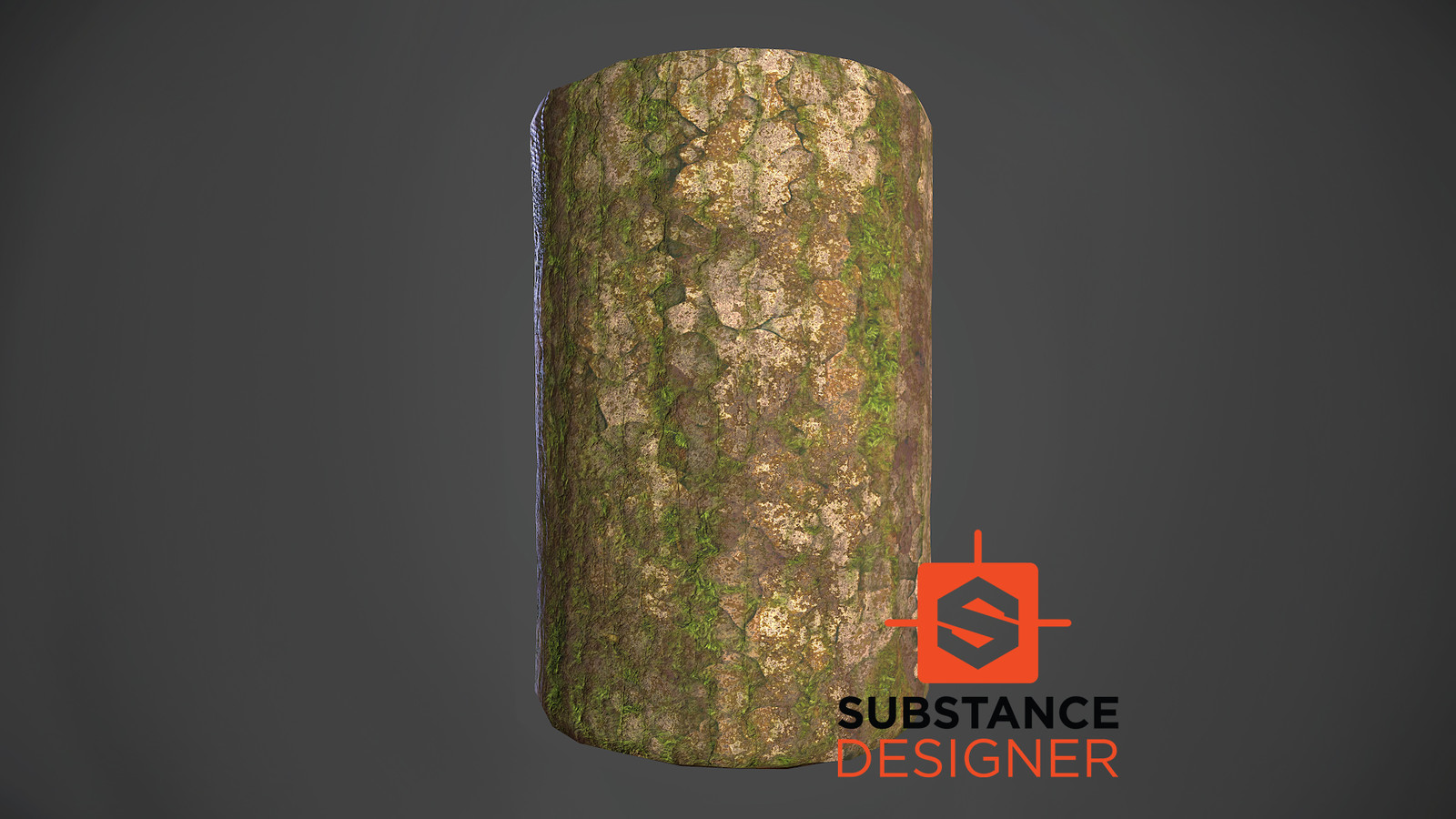 Tree Bark | Substance Designer Practice Pt. 2