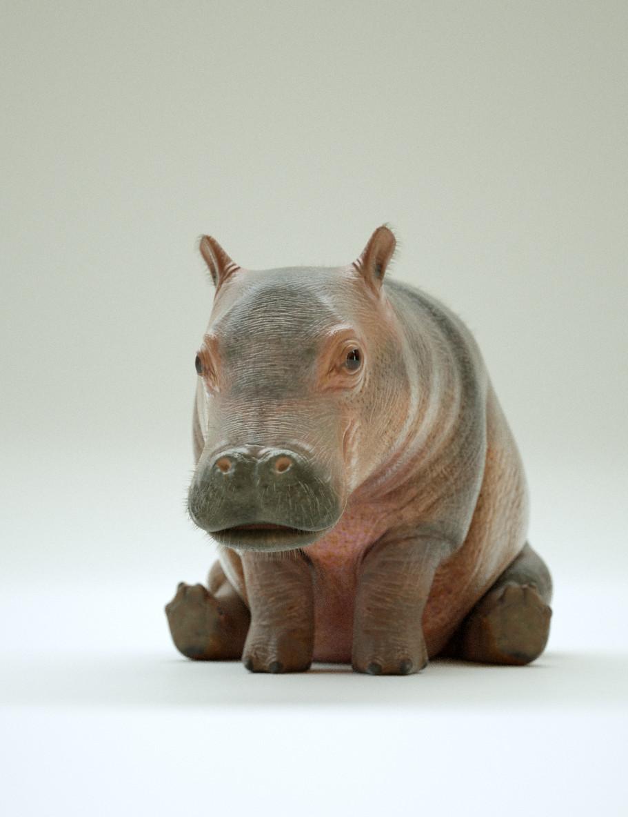 Baby Hippo - Aldi TV Commercial