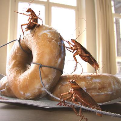 Jin hao villa alt mornin shot roach heist jin hao