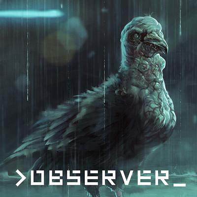 Mateusz lenart observer characters lenart pigeon icon