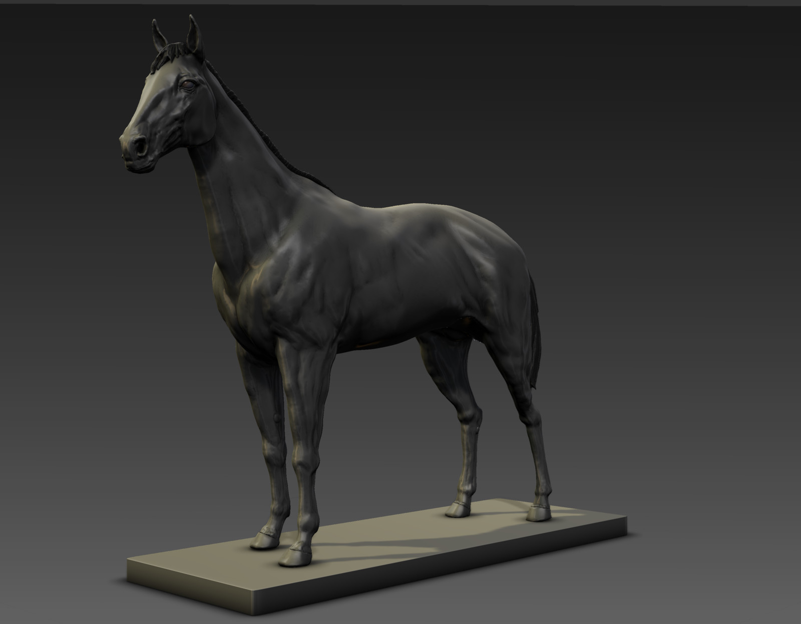 Horse Anatomical Study Using Dynamic Tessellation in Mudbox 2018-2