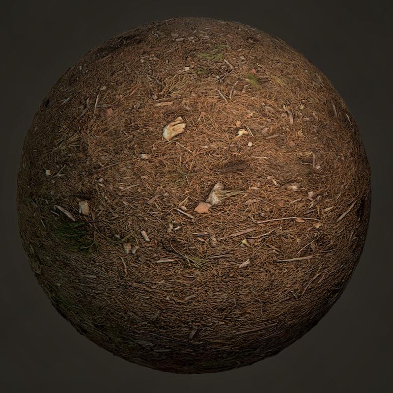 Pine Forest Floor Photogrammetry - Render Ball