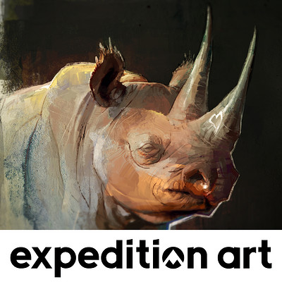 Thierry doizon expeditionart id barontieri rhino thumb