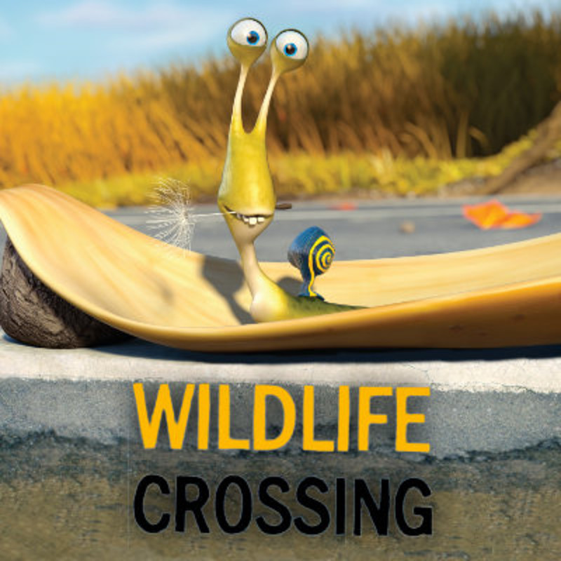Wildlife Crossing!