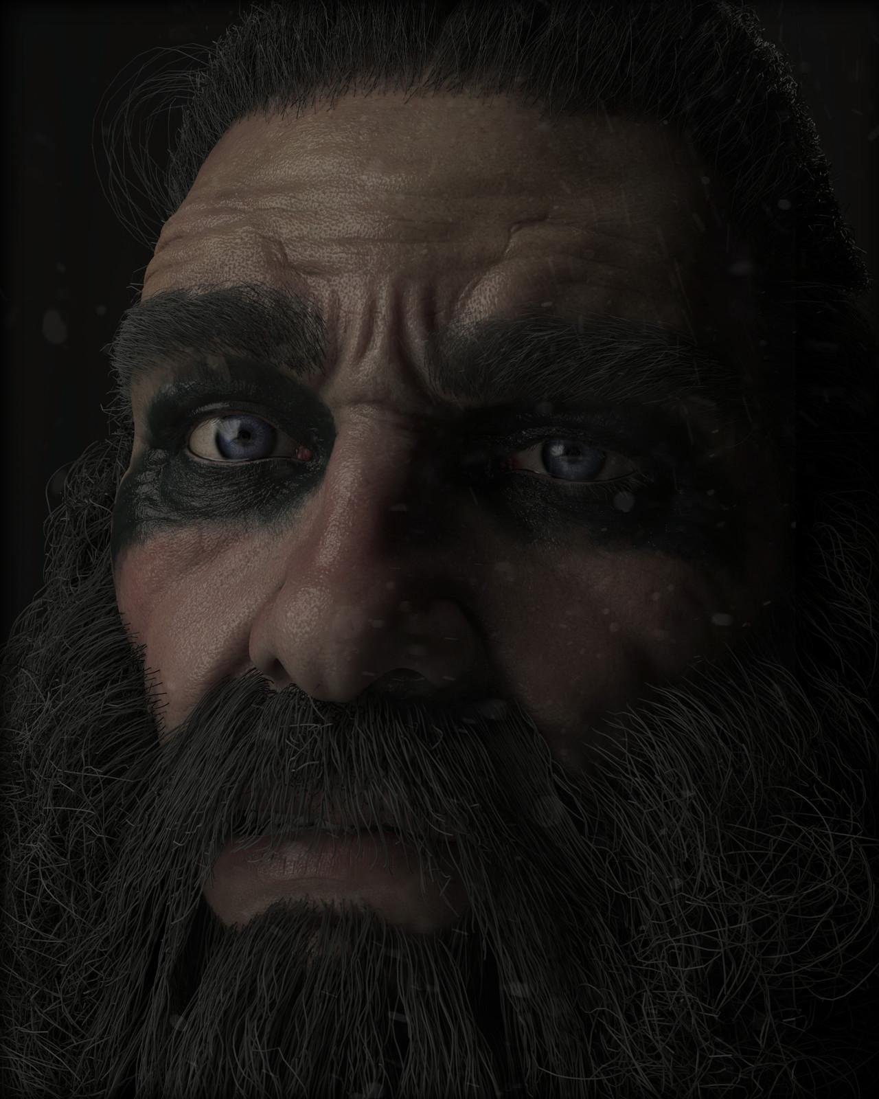 Bust #23: Viking?