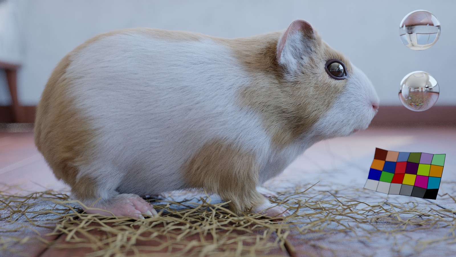Guinea pig look dev test