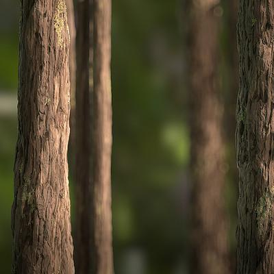 Aenok oh tree scene 01