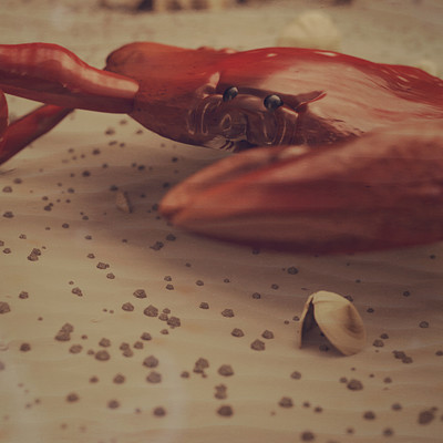 CGI CRAB - Study of the anatomy of a crab