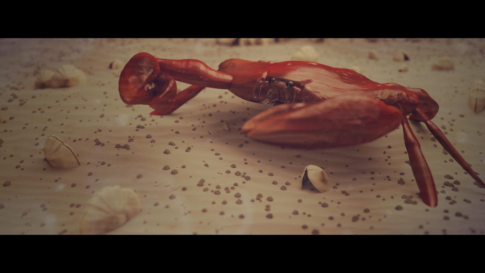 CGI CRAB - Study of the anatomy of a crab