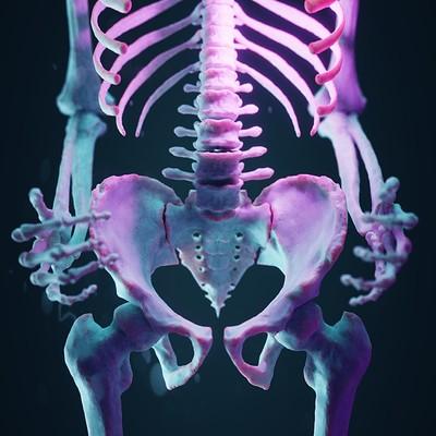 Wanoco 4d bone42