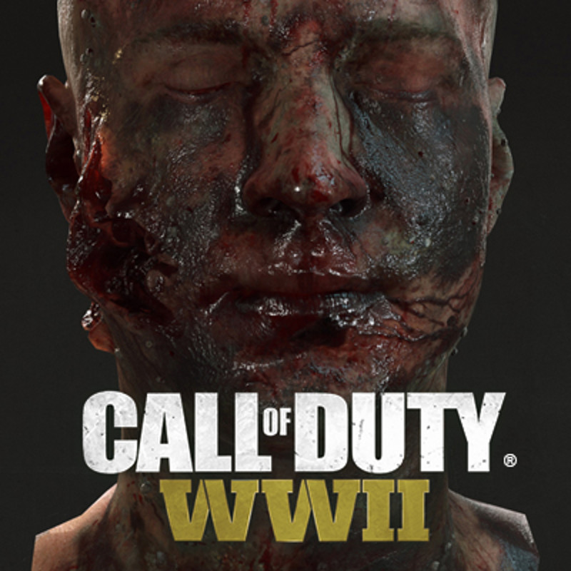 Call of Duty WWII other assets