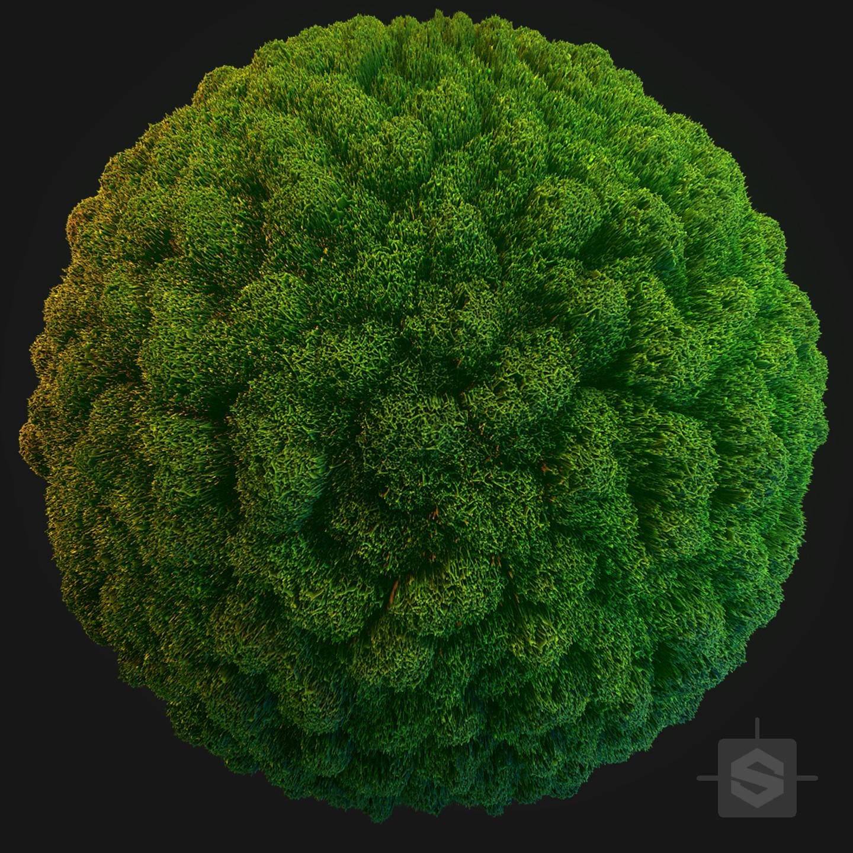 Substance Designer - Moss