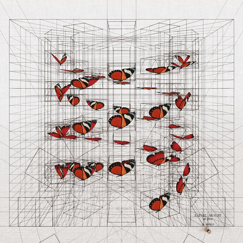 Rafael Araujo - Butterfly projection (2018)