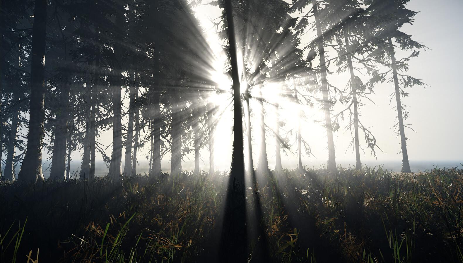 ArtStation - Cryengine sweet nature 4, Lucas Ruyer