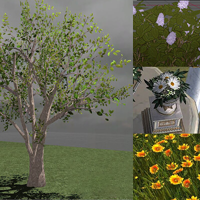 Elise ejtheartist motzny thmbs everjane foliage