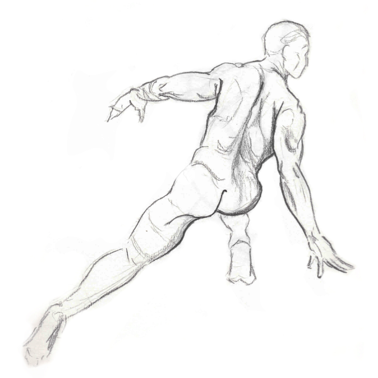 Life Drawing - The Male Figure