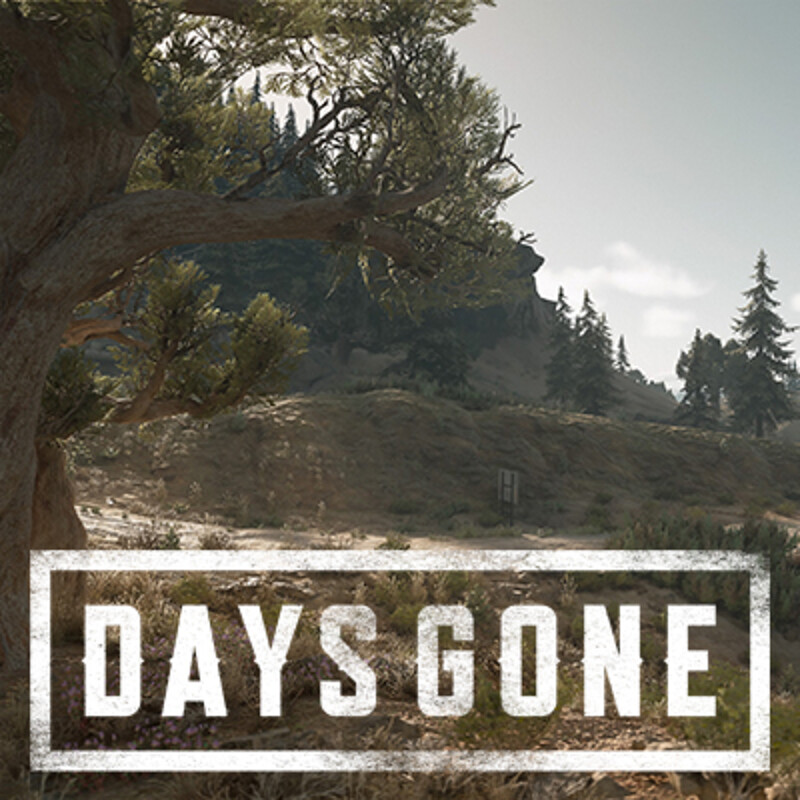 Days Gone - Belknap Region