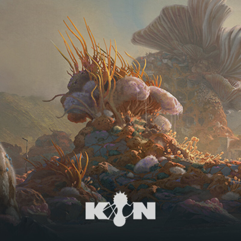 KIN - The Shore | 沿岸