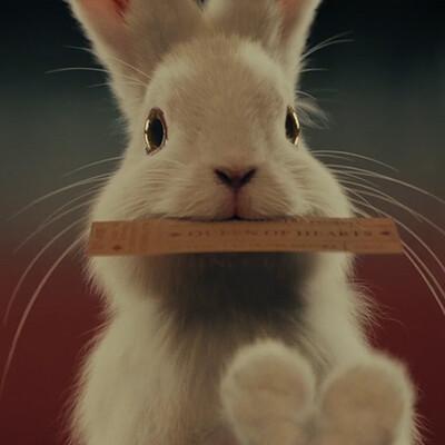 Antepost rabbit projectthumbnail