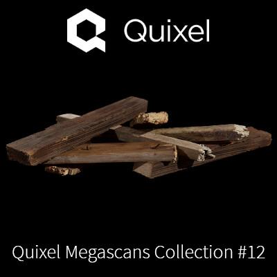 Quixel Megascans Wood Debri
