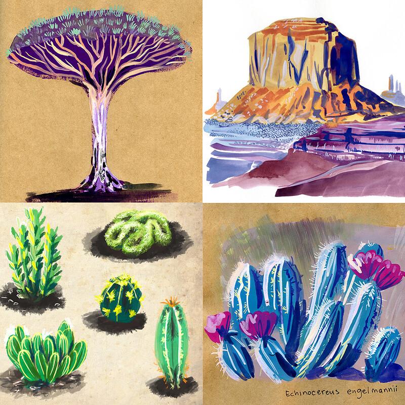 [Restless] - Environment studies [Flora and Desert]