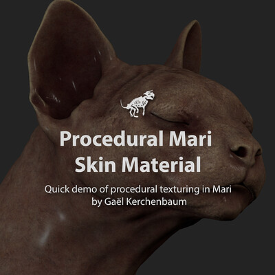 Gael kerchenbaum skinmaterialdemo 002