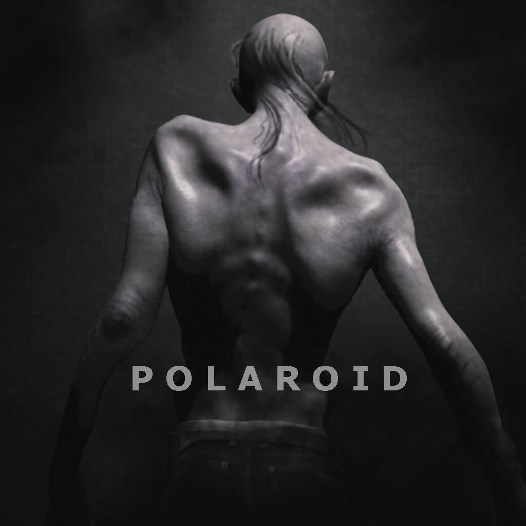 Polaroid concept art - 01