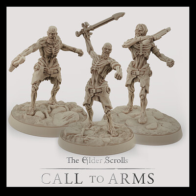 Basics Draugrs . The Elder Scrolls - Call to Arms