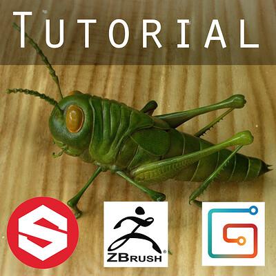 Pierre benjamin pierre benjamin grasshopper tutorial banner